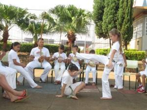 brasile-araras_ginga-na-roda