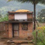 India Jubo paes_02